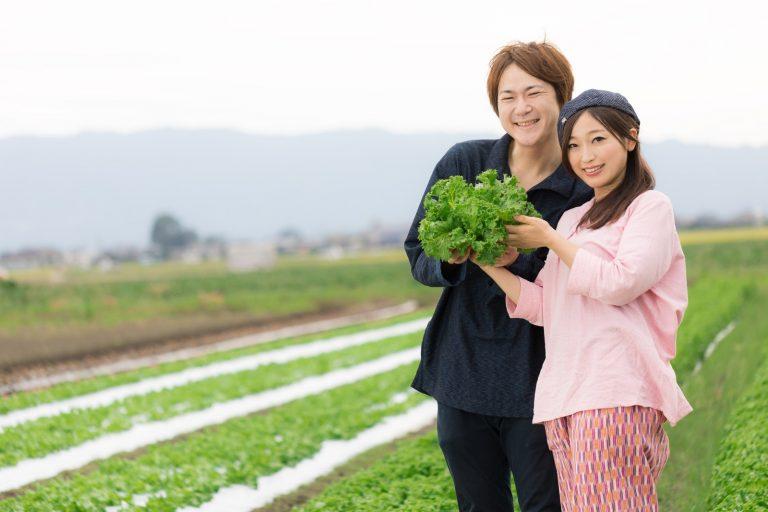 農業 副業